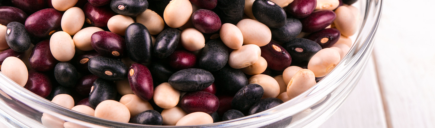 Types of Ontario Beans