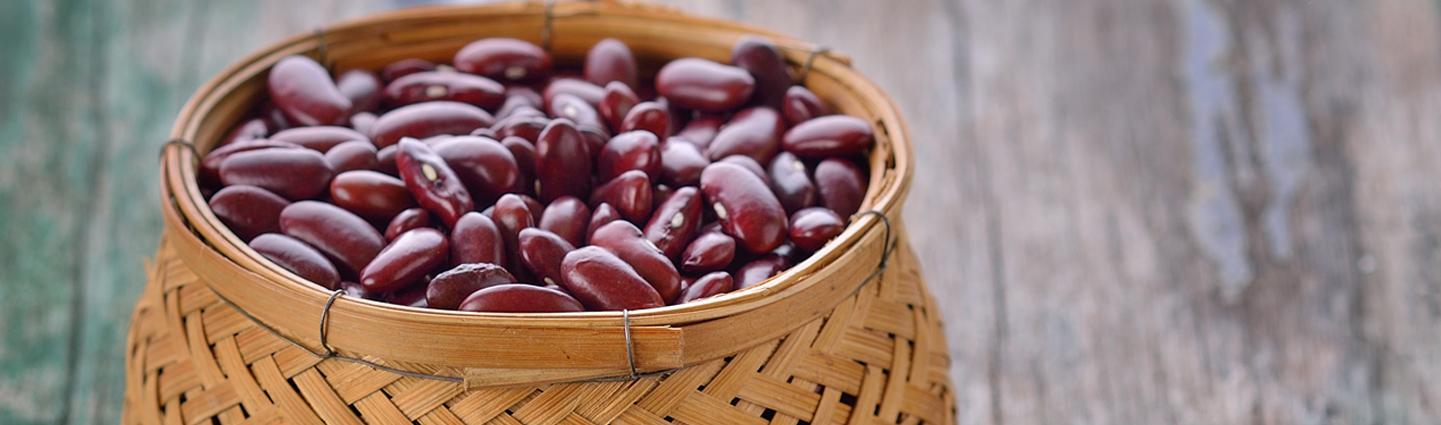 Where to Buy Ontario Beans